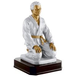Trophée résine judoka à genoux