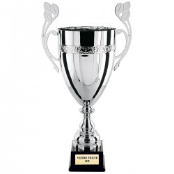 Coupe Argent Bol
